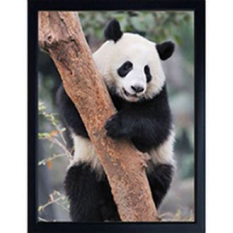 PANDA 3D FRIDGE MAGNET